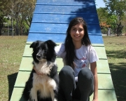 Adestramento Border Collie (15)