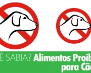 alimentos-proibidos-animal-de-estimacao (9)