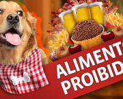 alimentos-proibidos-animal-de-estimacao (10)
