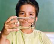Schoolboy Holding a Jar with Spider  --- Image by © Adriane Moll/Corbis