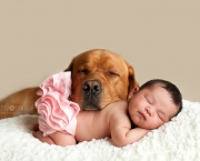 Big-Dogs-Little-Kids-0005