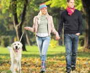 Couple-walking-their-dog-in-the-forest